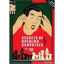 Jeroen Bosch: Secrets of Opening Surprises 12