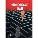 Ivan Ivanisevic, Milos Perunovic: 2020 Endgame Maze