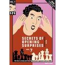 Jeroen Bosch: Secrets of Opening Surprises 7