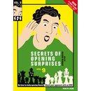 Jeroen Bosch: Secrets of Opening Surprises 9
