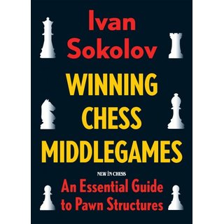 Ivan Sokolov: Winning Chess Middlegames